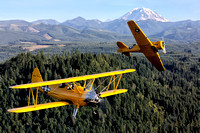 Stearman & Texan A2A